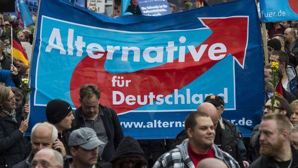 Les partisans du parti l'Alternative pour l'Allemagne - Sputnik France
