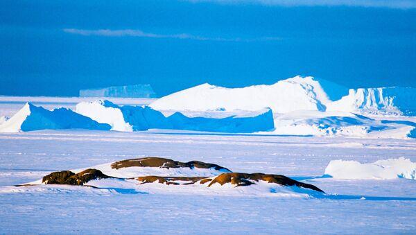 Antarctique - Sputnik France
