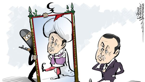 La Turquie ressemble de plus en plus à une monarchie du Golfe - Sputnik France