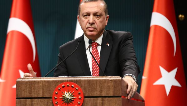 Le président turc Recep Tayyip Erdogan - Sputnik France
