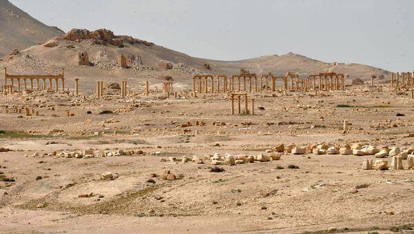 L'offensive US à Raqqa en pause «pour laisser Daech attaquer Palmyre» - Sputnik France