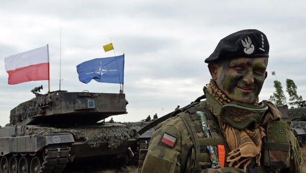 Le commandant de char polonais sourit après un exercice de l'OTAN Response Force  (NRF) à Zagan, sud-ouest de la Pologne le 18 Juin 2015 - Sputnik France