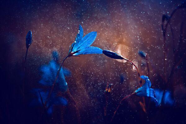 La photographe veut présenter sa vision du monde. - Sputnik France