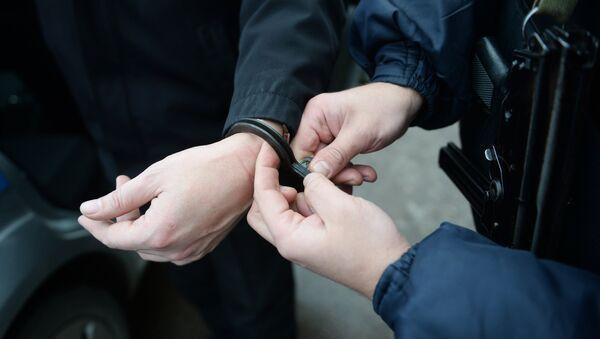 Работа вневедомственной охраны московской полиции - Sputnik France
