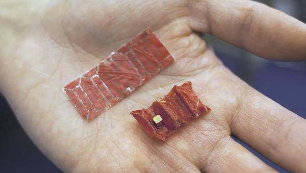 Ce robot-origami qui retire de l'estomac les objets avalés - Sputnik France
