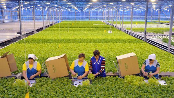 Agriculture - Sputnik France