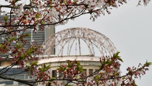 The Atomic Bomb Dome is seen under cherry blossoms in full bloom at the Peace Memorial Park in Hiroshima on April 9, 2016. - Sputnik France