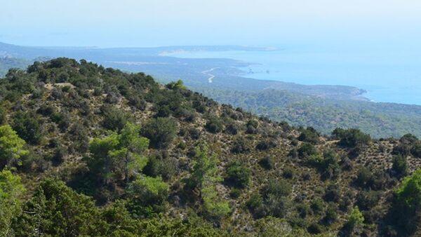 Propriétaire d'une chaîne d'hôtels à Chypre : accepter que les touristes russes paient leurs séjour en roubles - Sputnik France