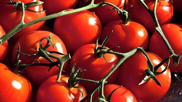 Des tomates - Sputnik France