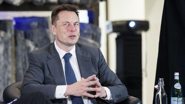 Elon Musk, en superhéros même sous les apparences d'un rat - Sputnik France