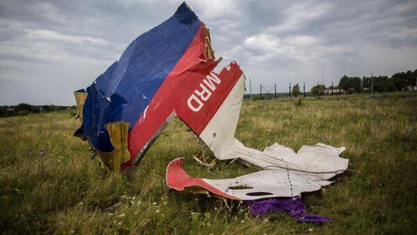 Débris du vol MH17 - Sputnik France