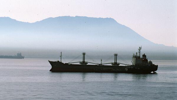 Un navire cargo - Sputnik France