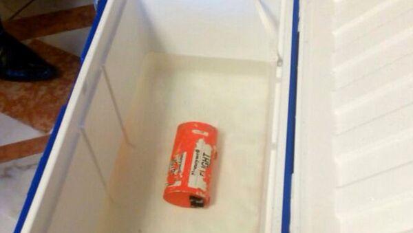 Les boîtes noires de l'avion d'EgyptAir - Sputnik France