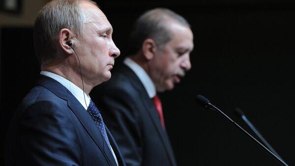 Рабочий визит В.Путина вТурцию - Sputnik France