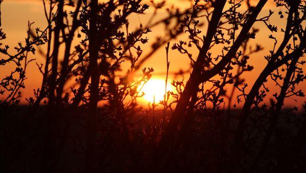 lever du soleil - Sputnik France