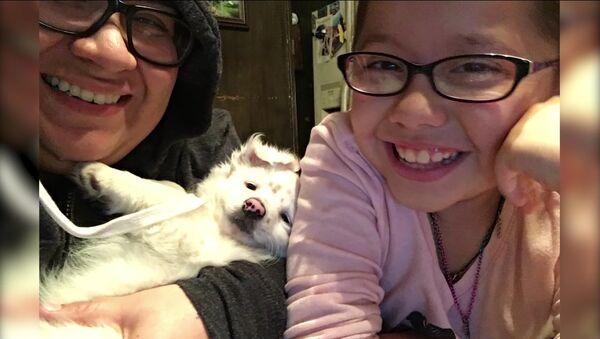 Une fille de 10 ans parle en langue des signes à son petit chien - Sputnik France