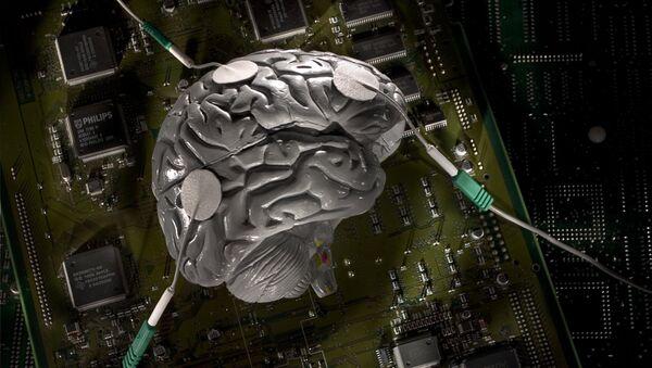 cerveau - Sputnik France