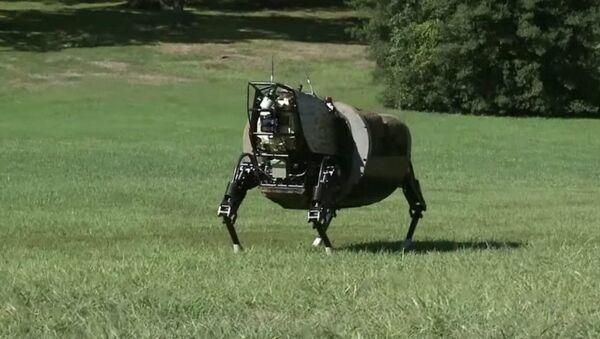 Alpha Dog, un robot de soutien pour les Marines US - Sputnik France