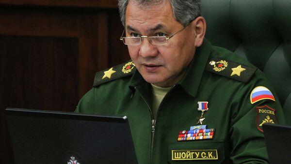 Sergueï Choïgou, ministre russe de la Défense - Sputnik France