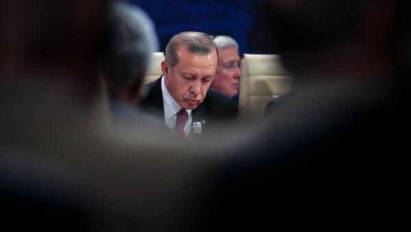 TLe président turc Recep Tayyip Erdogan - Sputnik France