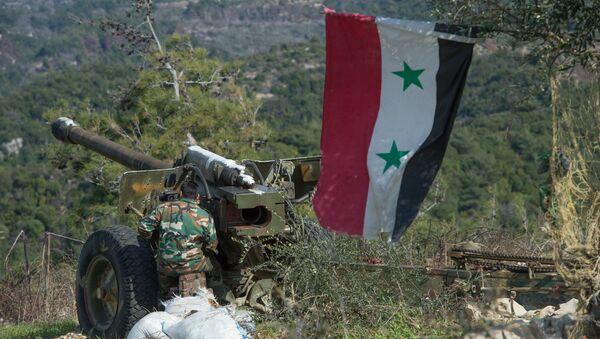 Syrian army artillery soldiers in Idlib province in northwestern Syria. file photo - Sputnik France