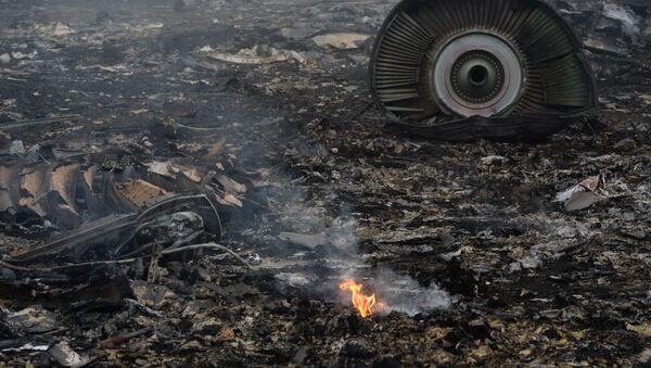 Le lieu du crash du Boeing malaisien dans le Donbass - Sputnik France