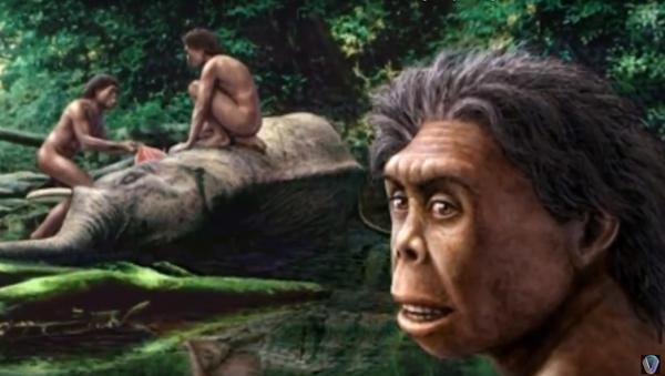 Homo Floresiensis - Sputnik France