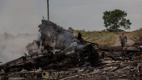 Crash d'un Boeing malaisien en Ukraine - Sputnik France