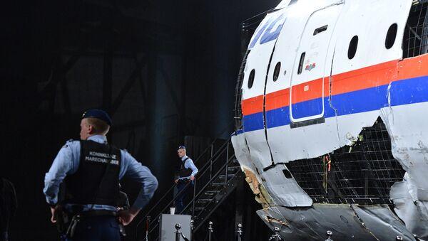 Crash du MH17 - Sputnik France