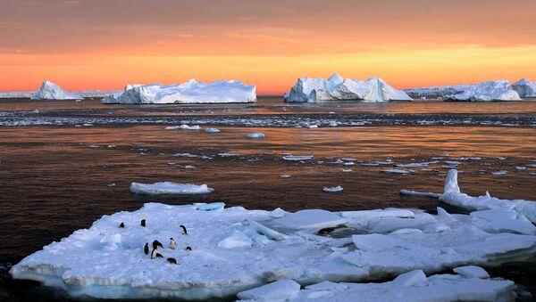 Des scientifiques découvrent la nature des fissures géantes en Antarctique - Sputnik France