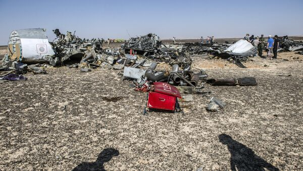 Debris belonging to the A321 Russian airliner are seen at the site of the crash in Wadi al-Zolomat, a mountainous area in Egypt's Sinai Peninsula on November 1, 2015. - Sputnik France