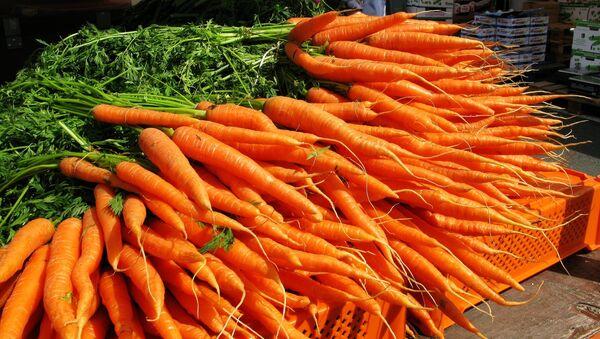 Karotten - Sputnik France