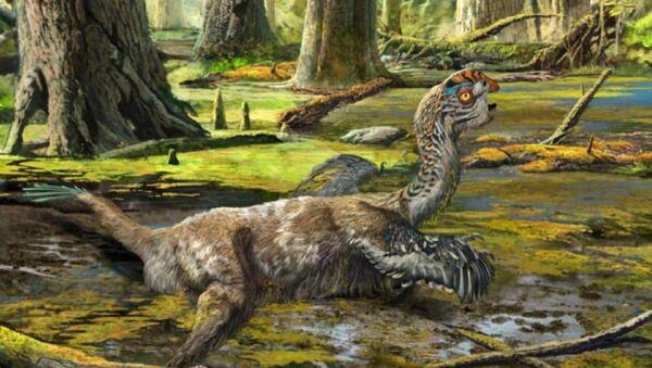 Une nouvelle espèce de dinosaure identifiée en Chine - Sputnik France