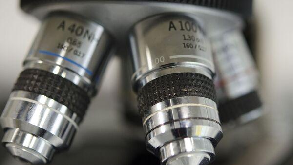 Microscope (image d'illustration) - Sputnik France