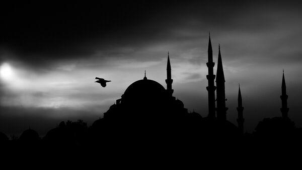 Un Conseil de district d'Istanbul faisait de la propagande djihadiste auprès des enfants - Sputnik France