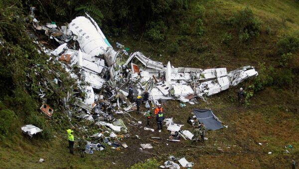 Le lieu du crash de l'avion - Sputnik France