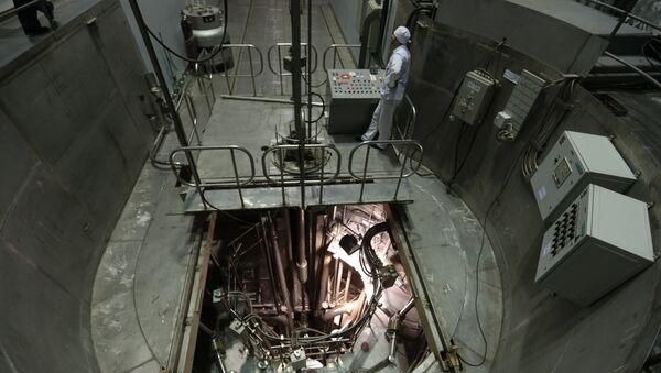 Une fuite d'eau à la centrale nucléaire de Flamanville - Sputnik France