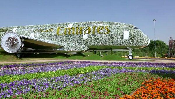 Dubaï, s'offre le record du monde du site le plus fleuri - Sputnik France