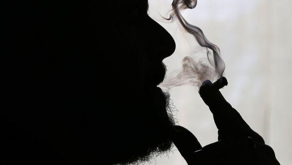 Cannabis - Sputnik France