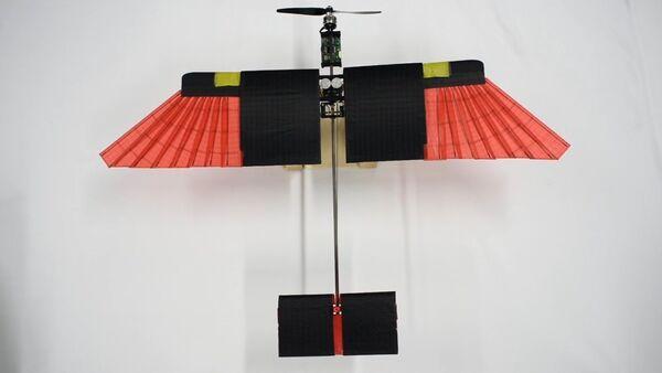 Ces nouveaux drones suisses volent avec des plumes - Sputnik France