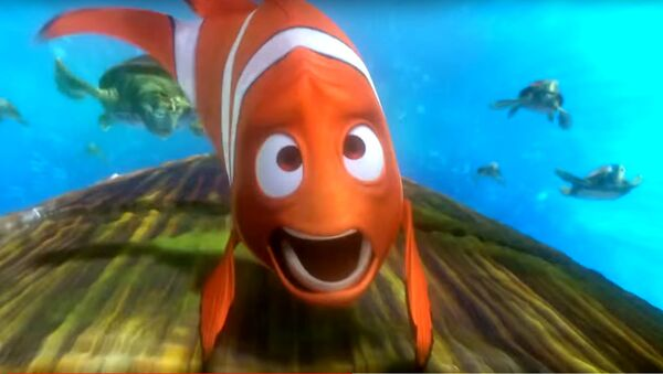 Plouf-plouf! Obama part loin dans les récifs coralliens - Sputnik France