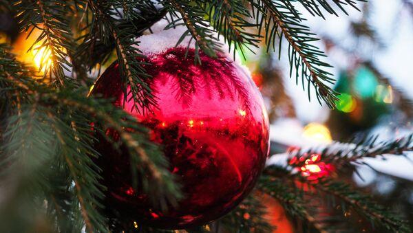 Le sapin de Noël - Sputnik France