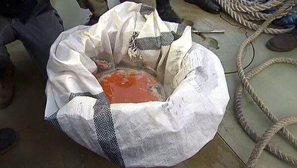 Бортовой самописец потерпевшего в Сочи самолета Ту-154 - Sputnik France