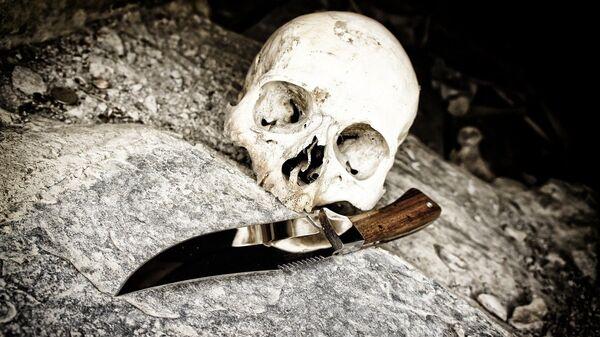Un crâne - Sputnik France