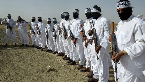 Combattants talibans - Sputnik France