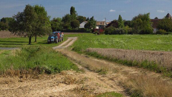 farmland - Sputnik France