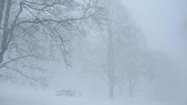 Les tempêtes de neige laissent des milliers de foyers sans électricité en France  - Sputnik France