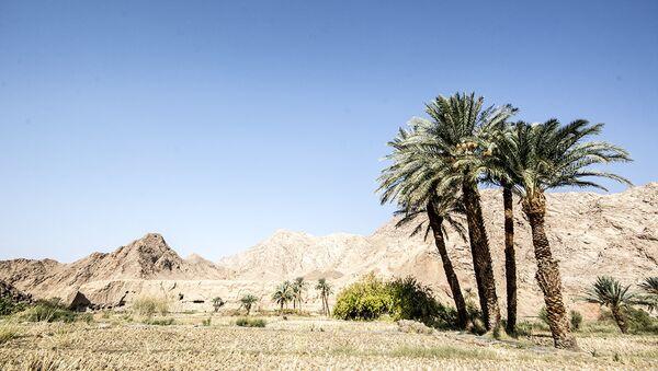 Tabas, une ville-oasis en plein cœur d'un du désert iranien - Sputnik France