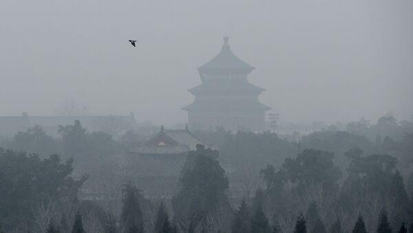 Comment la levure prédira le niveau de pollution atmosphérique en Chine? - Sputnik France