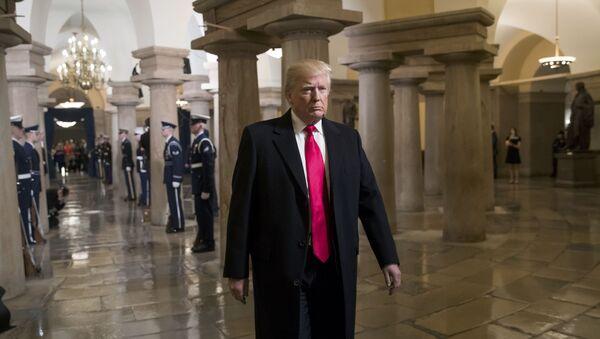 Le président américain Donald Trump - Sputnik France